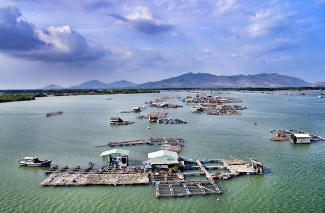 Làng Hàu Long Sơn