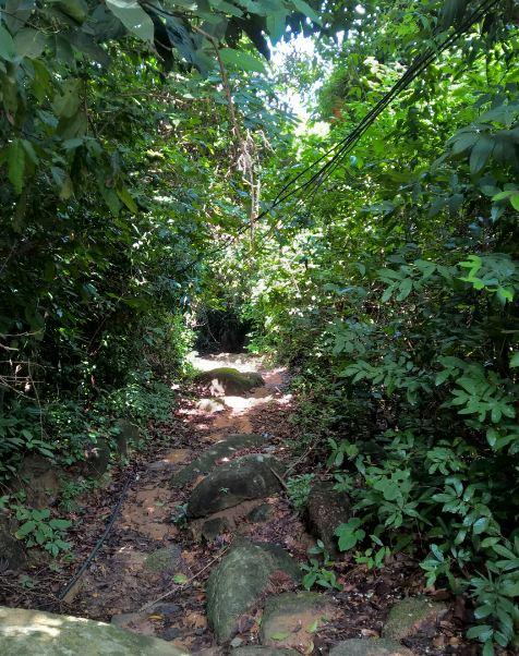 Con đường xuống chùa Tây Phương Vũng Tàu