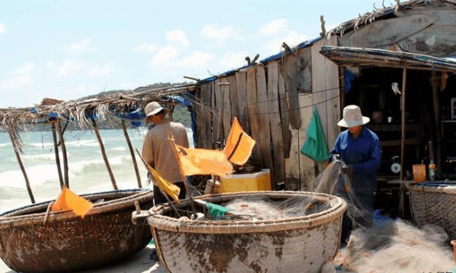 Khám phá cảnh đánh bắt hải sản tại làng chài Hàm Ninh