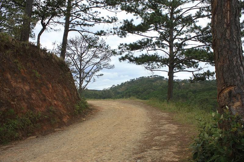 Đường đi Ma Rừng Lữ Quán