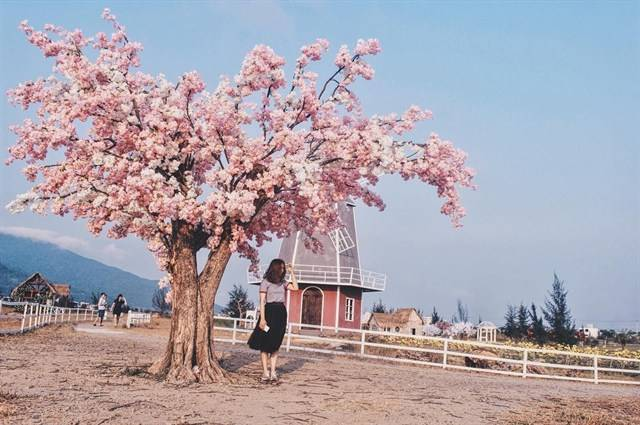 Thuận Phước Field