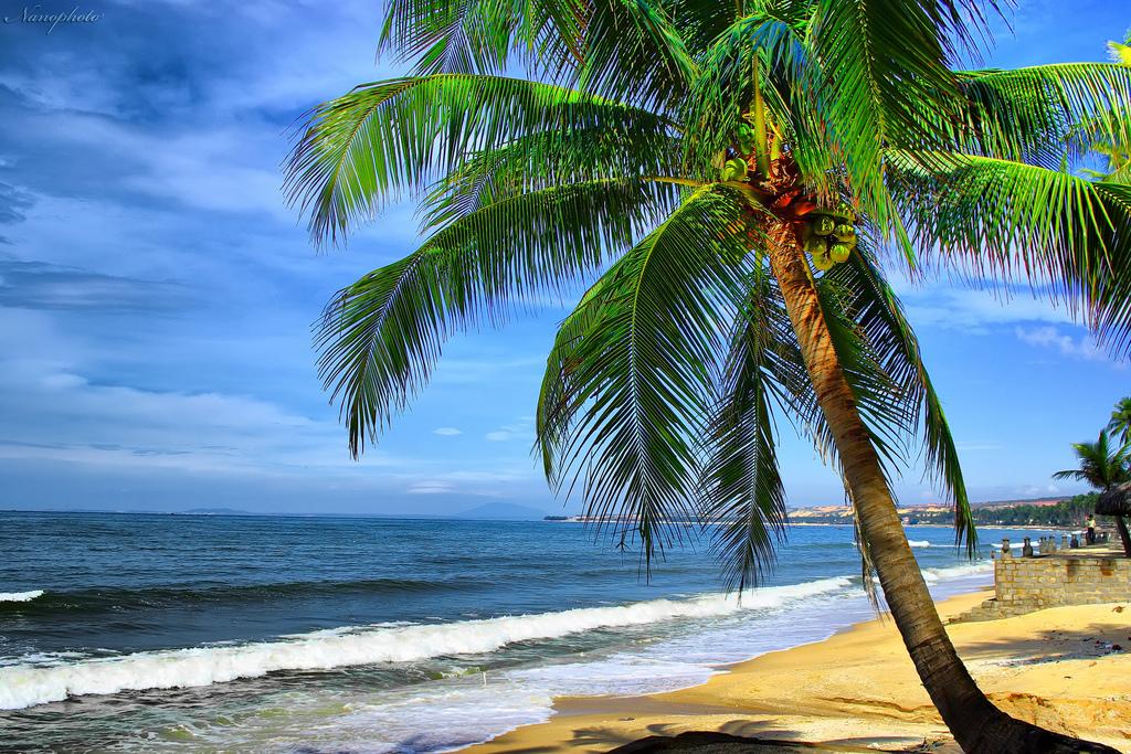 """8 bãi biển Nha Trang """"tuyệt đẹp"""" không thể bỏ qua - Vntrip.vn"""