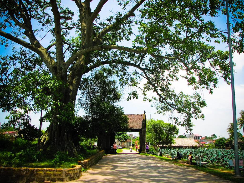 làng cổ đường lâm nơi bạn nên tham quan khi du lịch Hà Nội