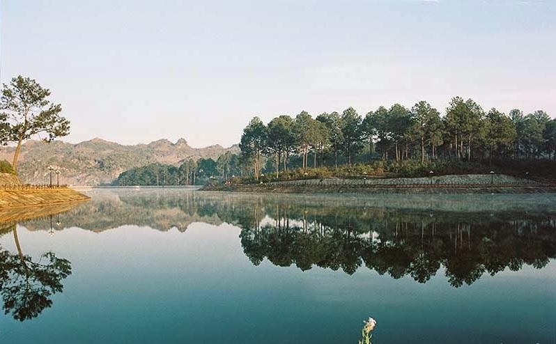 Rừng thông bản Áng - cảnh đẹp ở Mộc Châu