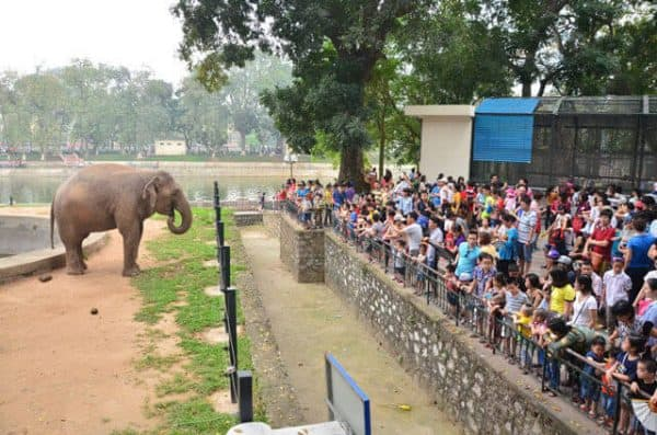 Công viên Thủ Lệ địa điểm vui chơi ở Hà Nội