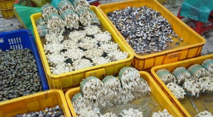 Nơi mua hải sản ở sài gòn phong phú tại chợ Bình Điền
