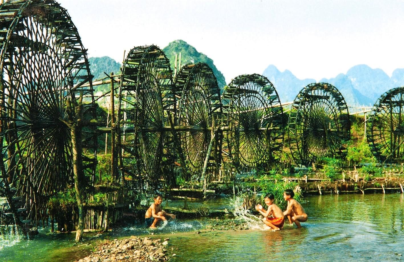 Cọ nước- vẻ đẹp Măng Đen