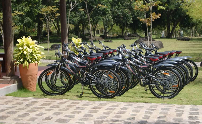 Dạo chơi cùng xe đạp
