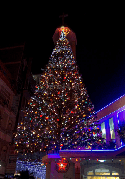 Cây thông Noel khổng lồ được đặt trên nóc nhà thờ An Nhơn