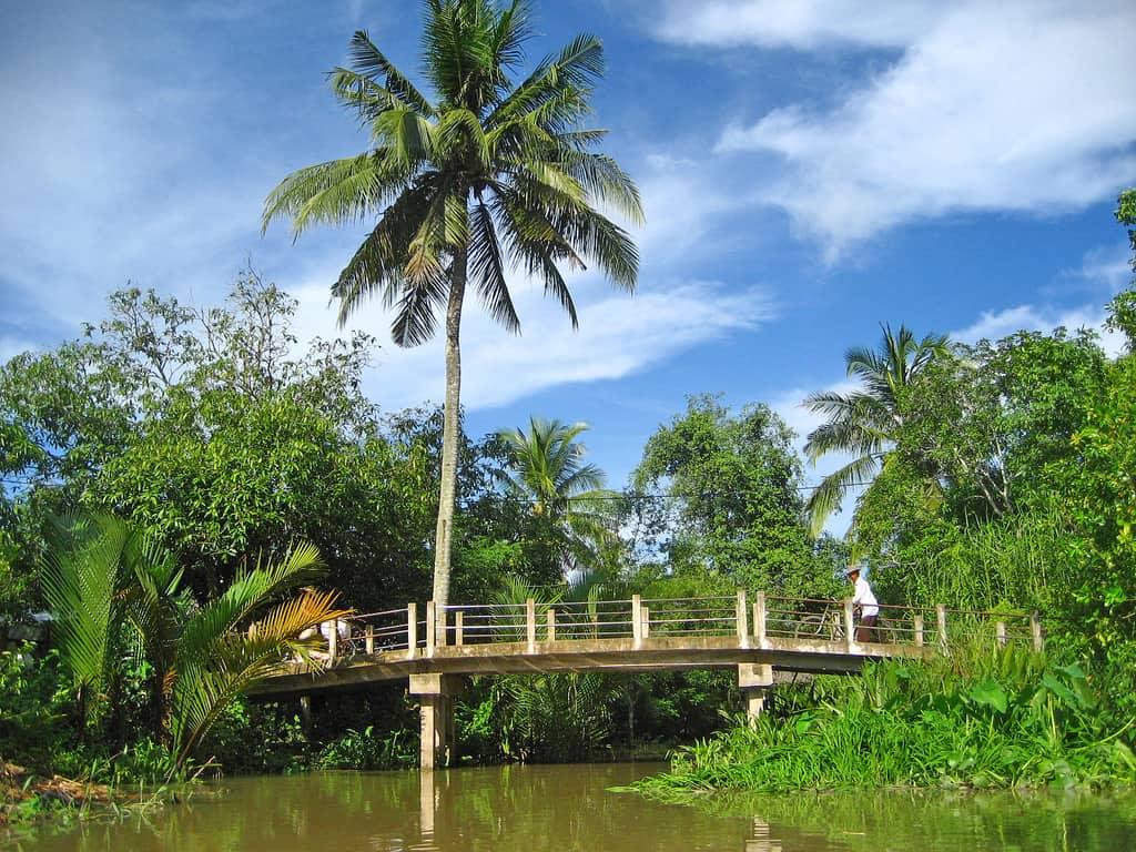 Phong cảnh miền quê yên bình địa điểm Cù Lao Minh(Ảnh: ST)