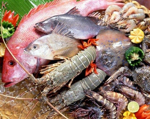 Nguồn hải sản Bãi Dài Nha Trang