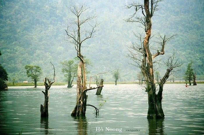 Hồ Noong độc đáo