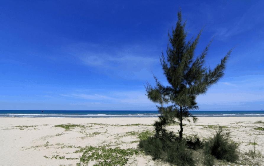 Du lịch Bãi biển Mỹ Khê Quảng Ngãi (Ảnh ST)