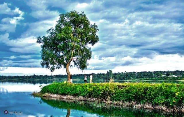 Vẻ đẹp xanh mướt của Hồ Chè (Ảnh ST)