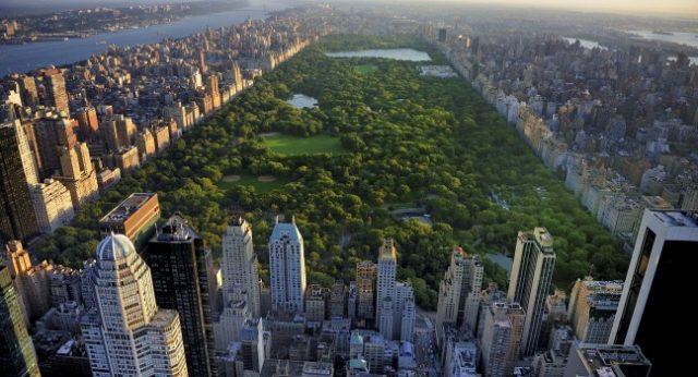 Lấy cảm hứng từ Central Park ở New York