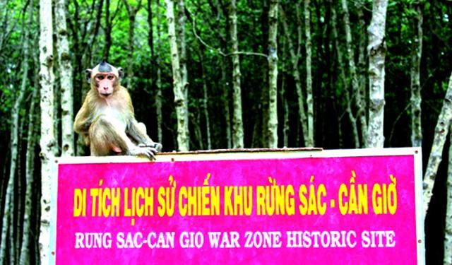 Cổng vào khu du lịch đảo Khỉ Cần Giờ (Ảnh: ST)