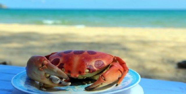 Thưởng thức món ngon Cua này bên cạnh bờ biển vô cùng phong vị (Ảnh: ST)