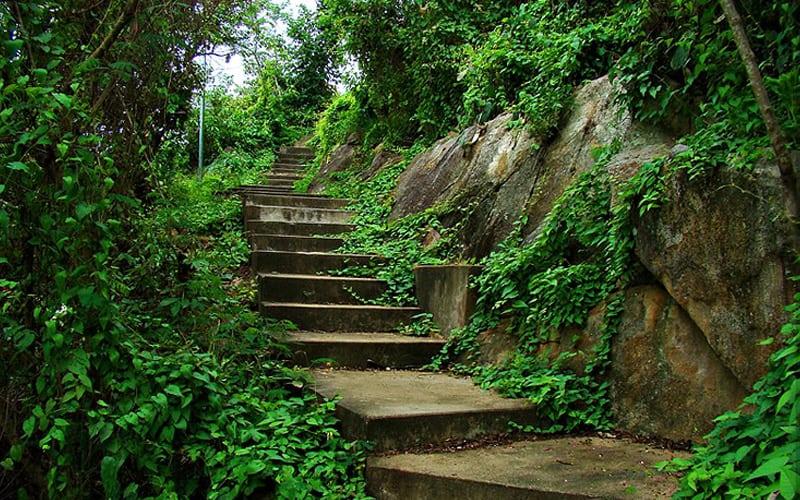 Đường lên núi Sam Châu ĐỐc (ảnh sưu tầm)