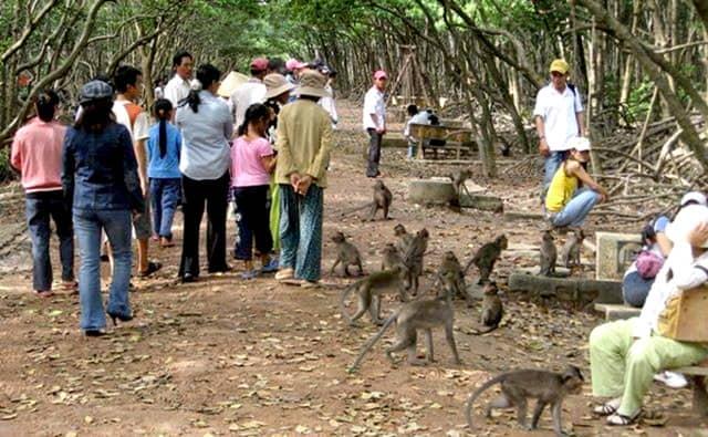 Thăm thú khu du lịch đảo khỉ Cần Giờ Hồ Chí Minh (Ảnh: ST)