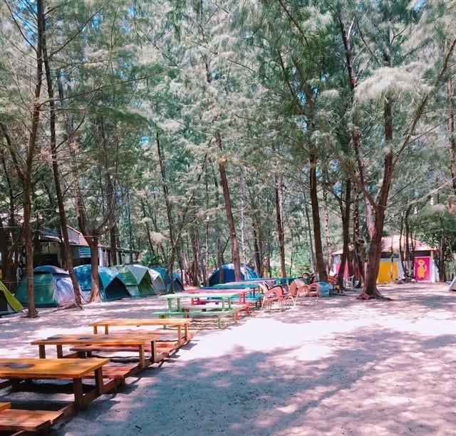 Quanh khu trại trồng nhiều cây xanh (Ảnh: ST)
