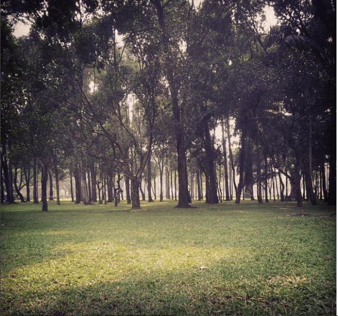 không khí trong lành ở công viên Gia Định