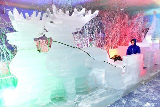 Xe tuần lộc tuyết trắng muốt