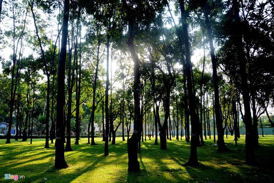 Lá phổi xanh của thành phố - công viên Gia Định Gò Vấp