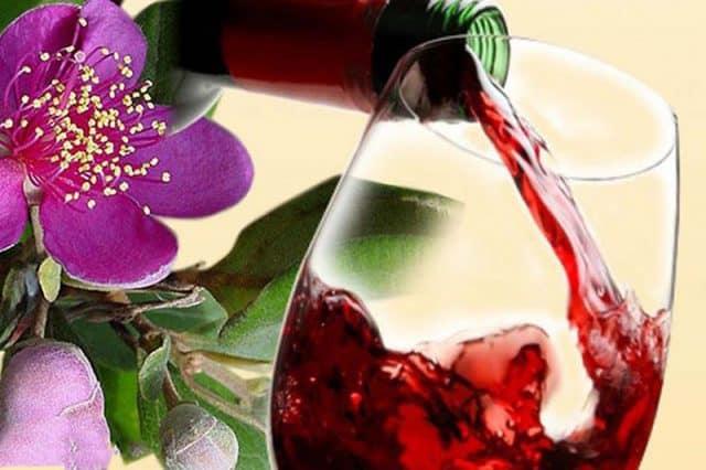 Thành quả là ly rượu sim sánh đỏ - một đặc sản ở Phú Quốc