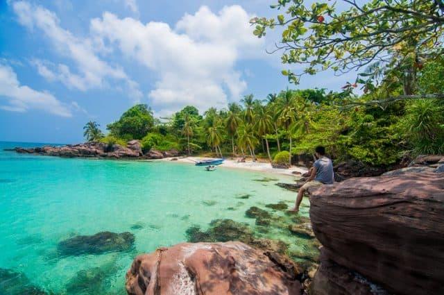 Hàng dừa xanh vươn mình trong gió biển