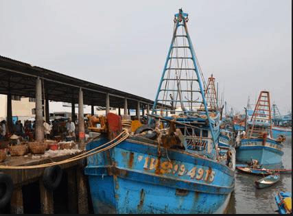 Cảng Bến Đá chuyển hải sản ra chợ Bến Đá