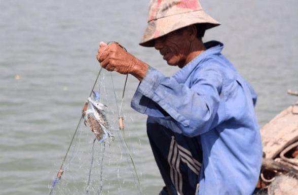 Cảnh đánh bắt cá của người dân vùng đảo Thạnh An