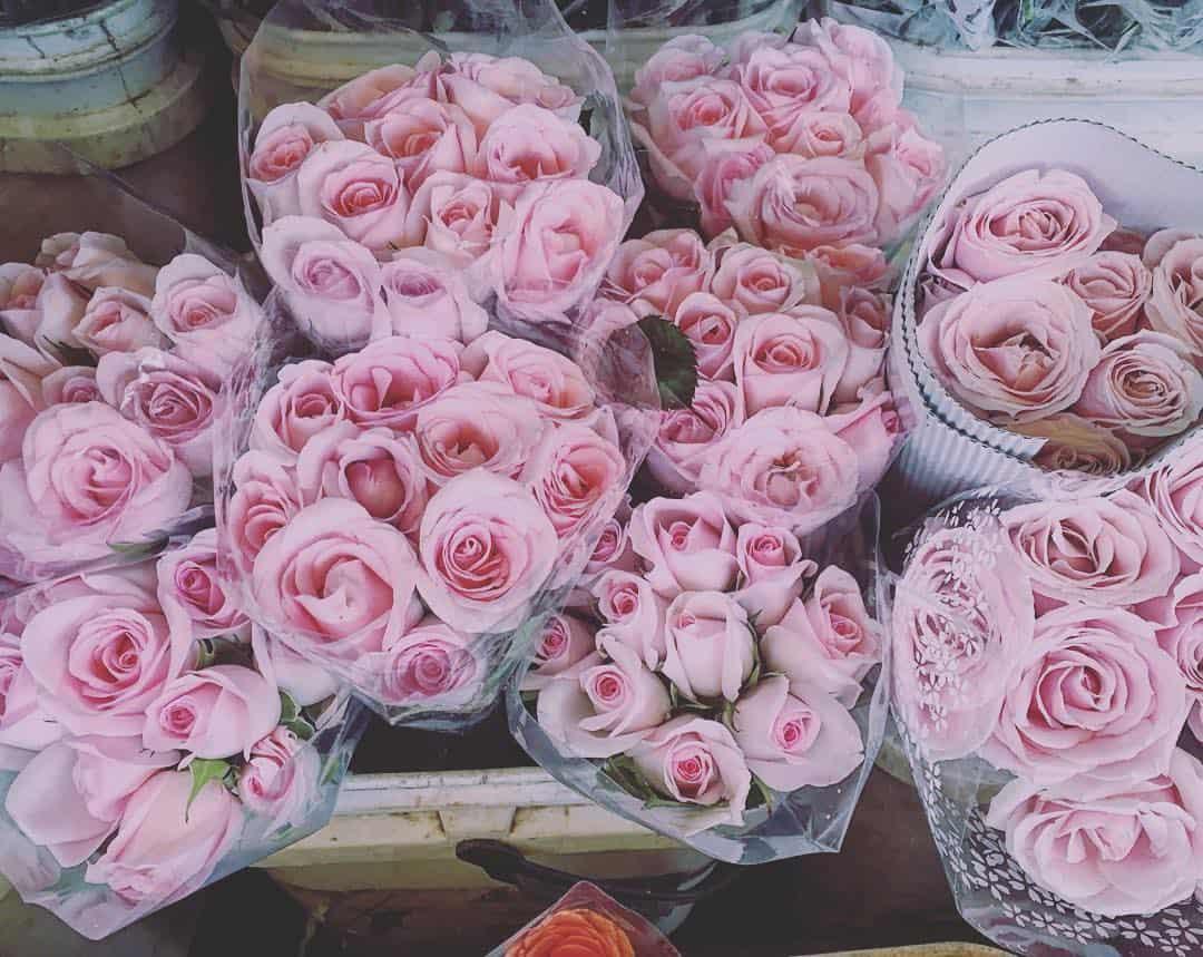 Rất nhiều loài hoa đẹp tại chợ Đà Lạt