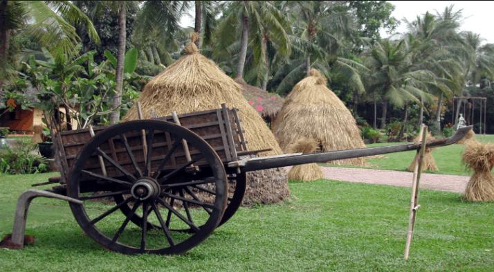 Khung cảnh vùng quê yên tĩnh tại Khu du lịch Bình Quới