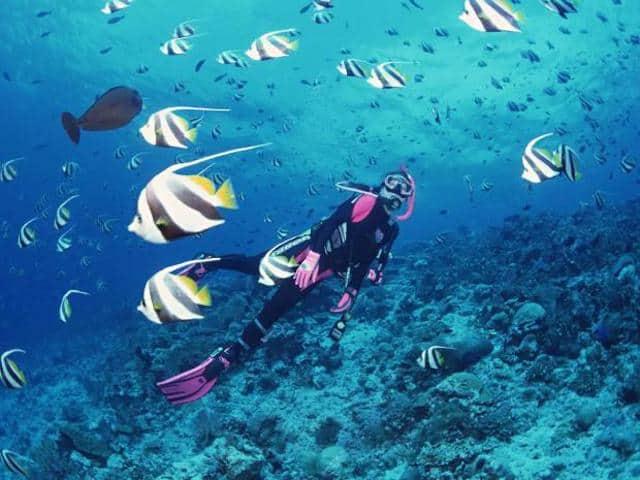 Dịch Vụ Lặn Biển Nha Trang