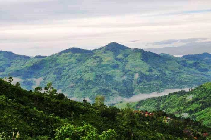 Khe núi Ngọc Linh khi được chụp từ xa. (Ảnh ST)
