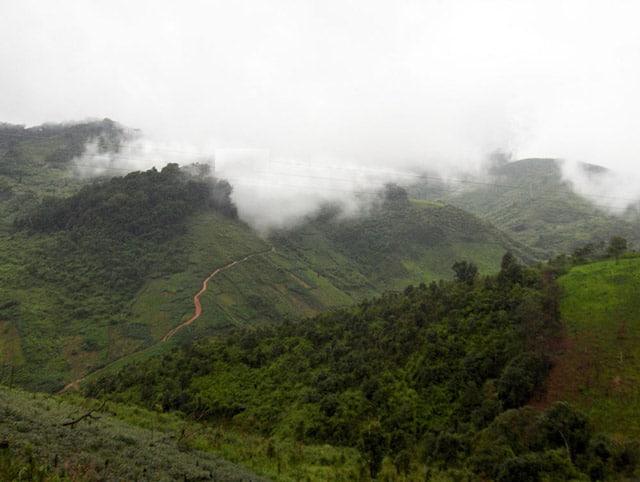 Luôn có những đám mây đang lơ lửng ở trên đỉnh núi Ngọc Linh. (Ảnh ST)