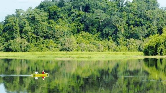 Khung cảnh xanh mát tại vườn quốc gia Cát Tiên