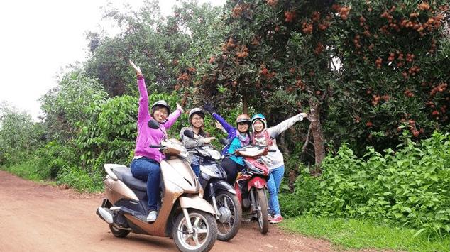 Vườn trái cây Long Khanh - Địa điểm phượt hấp dẫn