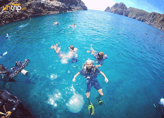 Lặn ngắm san hô ở Hòn Mun (Ảnh ST)