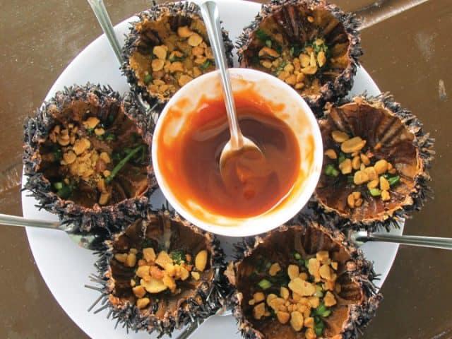 Tuy gai góc nhưng nhum lại là món ăn rất ngon và bổ dưỡng (Ảnh ST)
