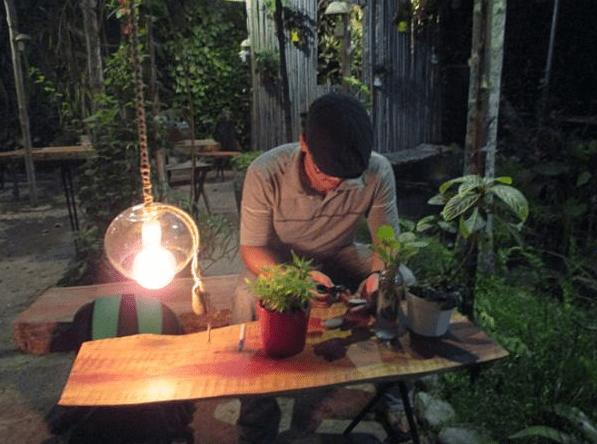 Cafe Vườn Ươm sở hữu một không gian yên tĩnh