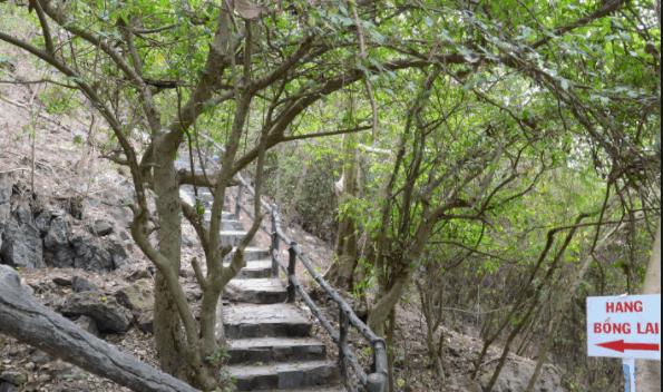 Đường lên hang Bồng Lai
