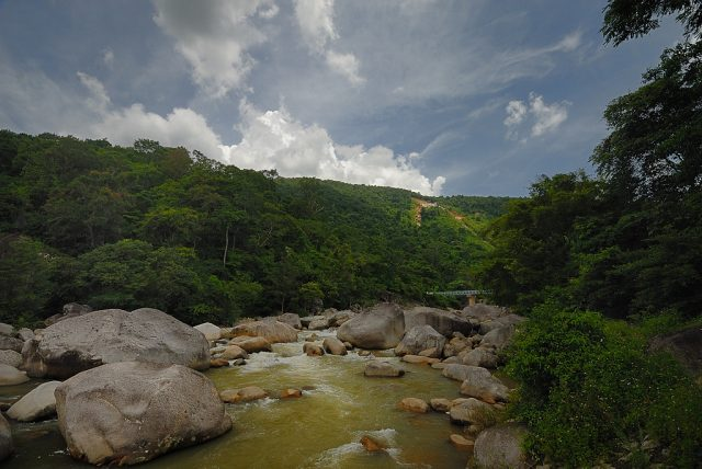 Không gian núi rừng xanh ngắt ở vườn Chư Yang Sin (ẢNH ST)