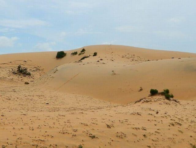 Một góc hoang sơ của đồi cát (Ảnh ST)