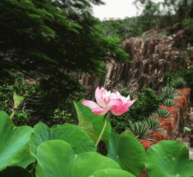 Một góc đẹp tại chùa Quan Âm Các