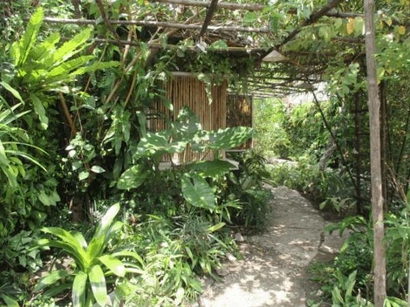 Tại quán cafe Vườn Ươm có rất nhiều cây cối xanh mát