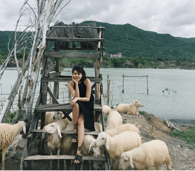 Tạo dáng một chút cùng đàn cừu ( Ảnh ST)