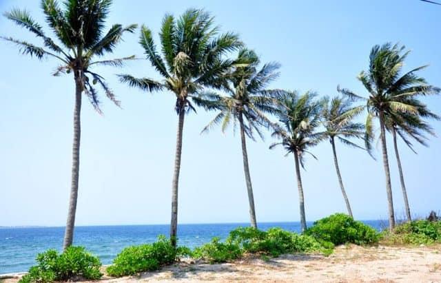 Hòn đảo với nét đẹp thanh bình như mời gọi (Ảnh ST)