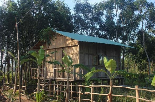 Pepper Farm Phú Quốc