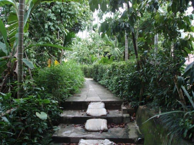 Lối lên làng Đại Đình (Ảnh ST)